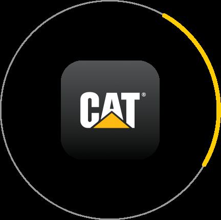 icon catapp
